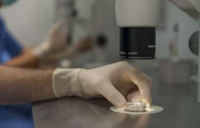 Fecondazione in vitro a Salerno